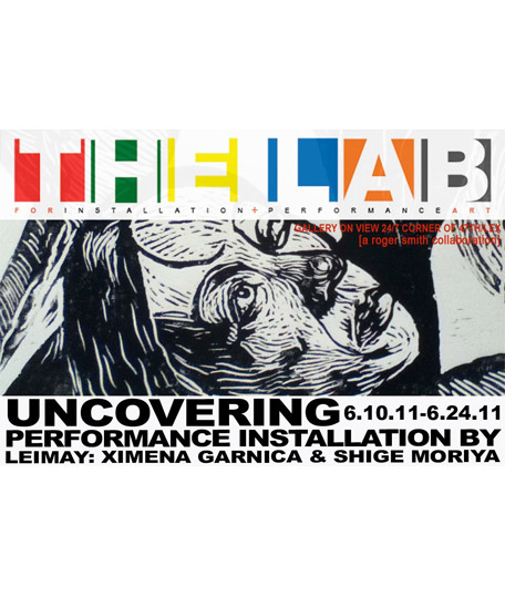 Hugo Crosthwaite | Uncovering @ The LAB Gallery, New York City